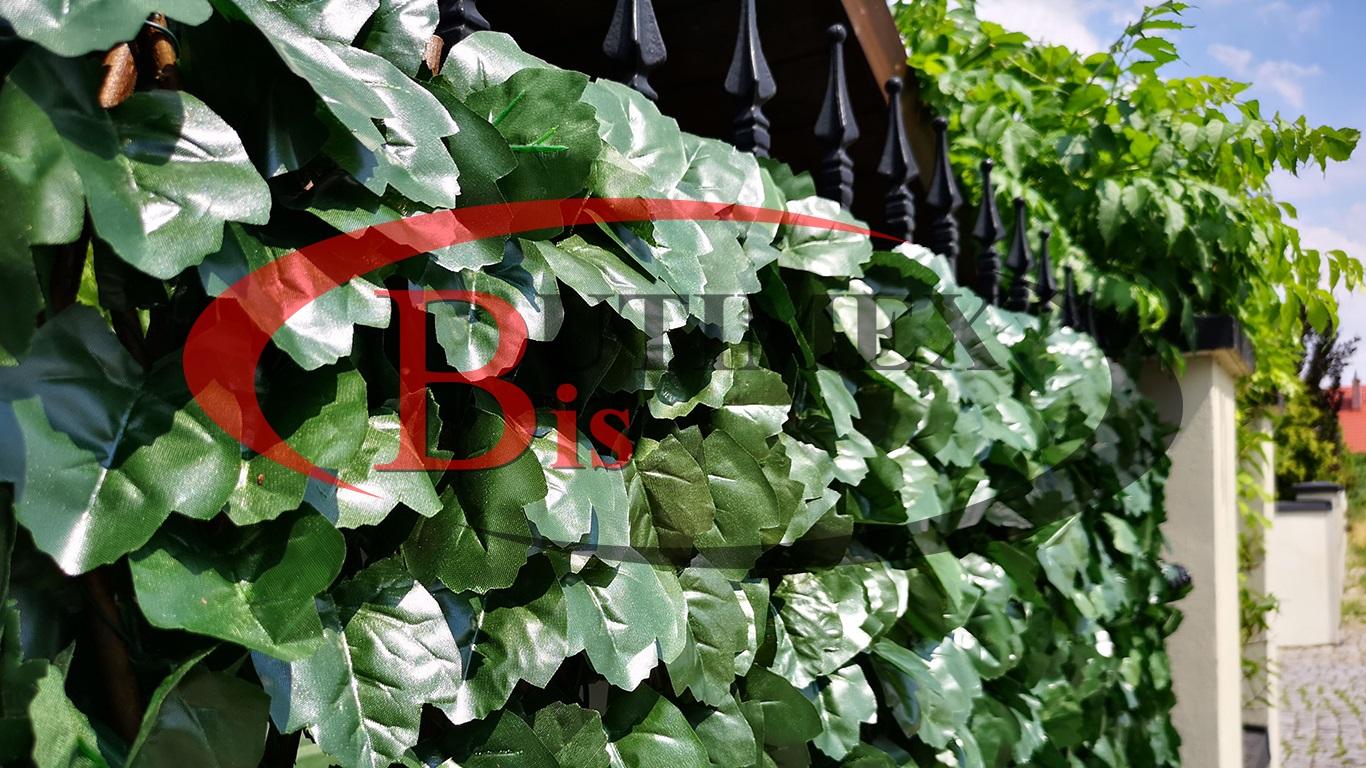 płotek regulowany winobluszcz - sztuczny żywopłot - liście